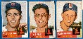 1953 Topps  - RED SOX - Starter Team Set/Lot (17 different)