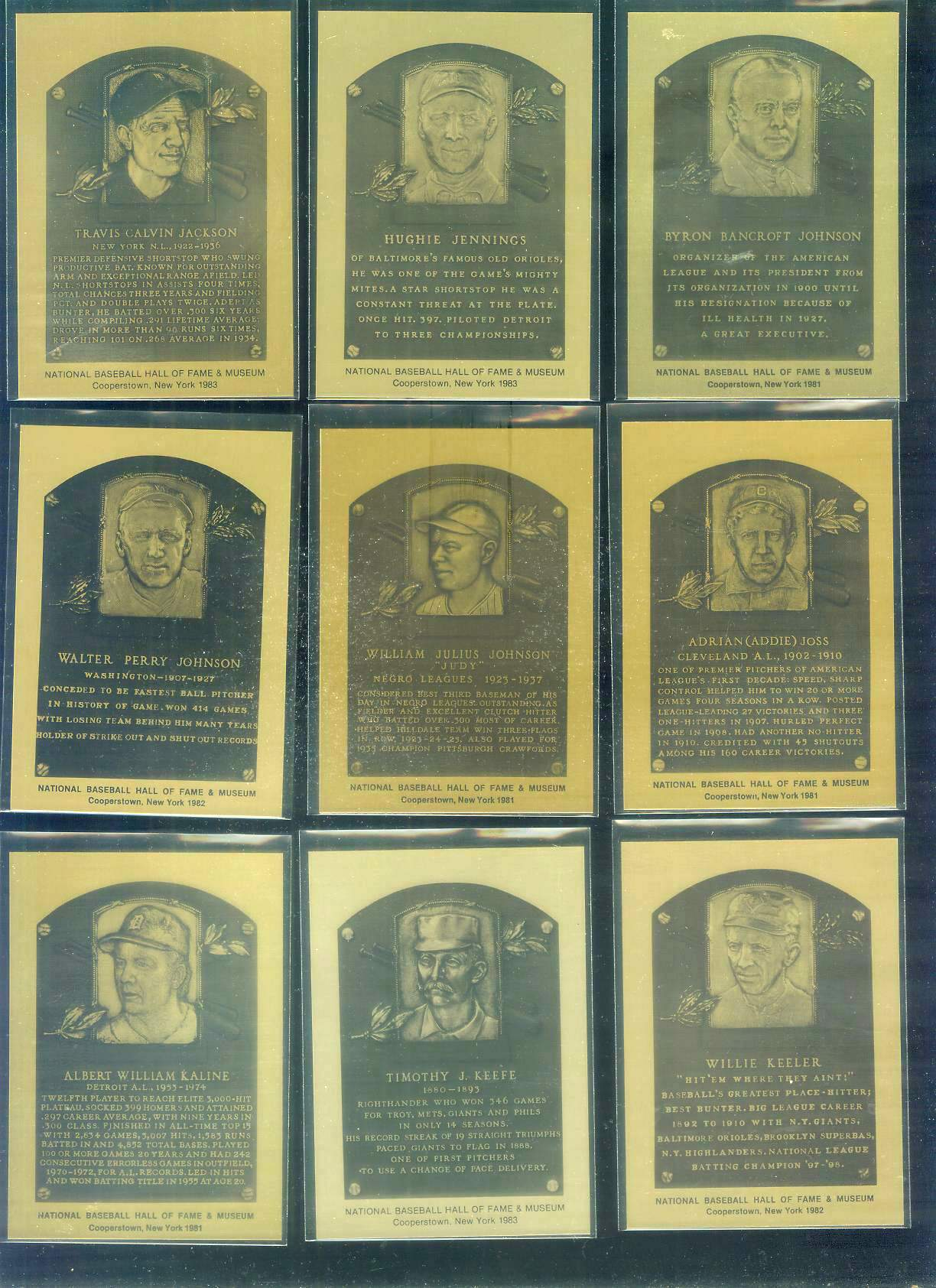 1981-89 Hall-of-Fame METAL PLAQUE #.26 Judy Johnson Baseball cards value