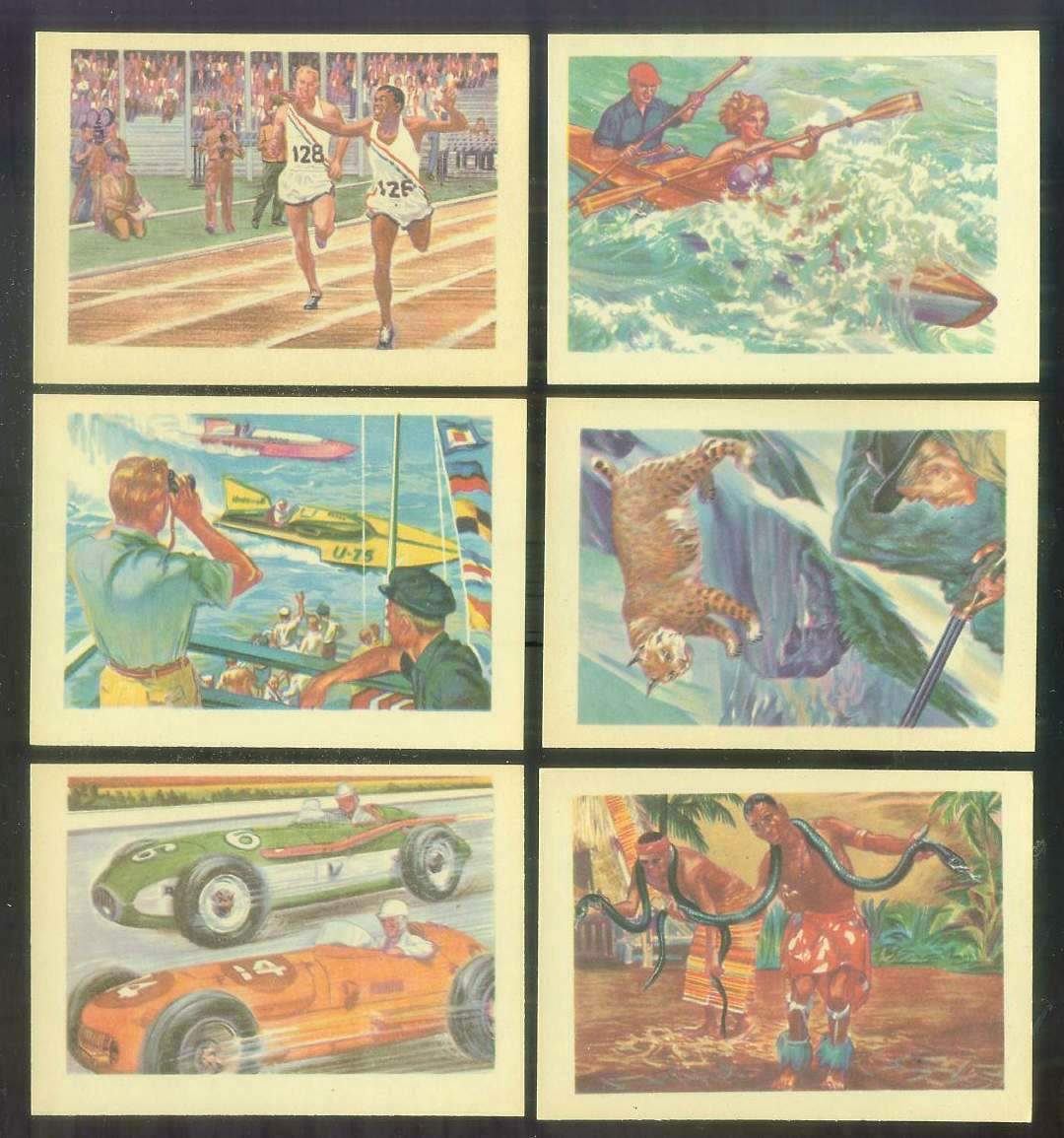 1956 GUM Inc. ADVENTURE #.12 'The Thousand Thrill Sport' Non-Sport cards value