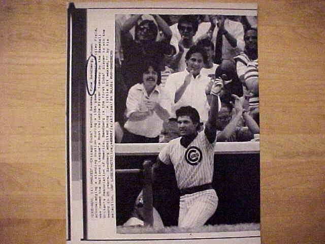 WIREPHOTO: Ryne Sandberg - {11/14/84} 'Amazed' (Cubs) Baseball cards value